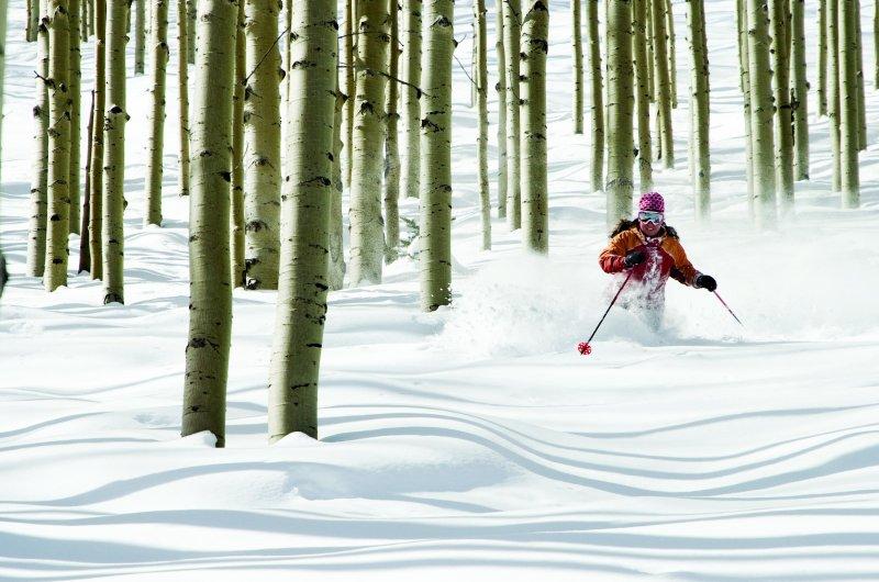 Aspen Tree skiing