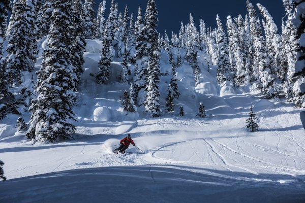CMH Heli-Skiing - The Public Works