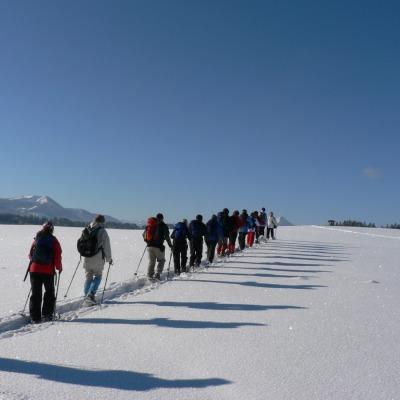 Schneeschuhgruppe auf der Elleghöhe