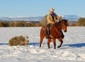 Telluride Cowboy