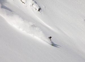 Skifahrer im Powder