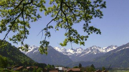 Reichenbach Frühling 3