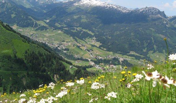 Blick ins Kleine Walsertal