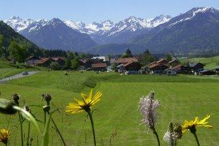 Reichenbach Frühling 5