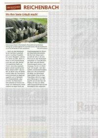 Zeitungsbericht über unsere Reichenbach-Im-Allgaeu.de - Website
