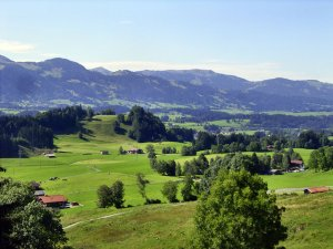 Blick Richtung Schöllanger Burg