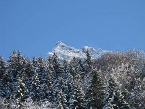Der Gipfel - das Rubihorn