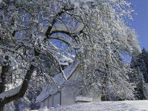 Frisch verschneit