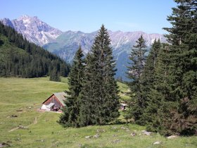 Willers-alpe