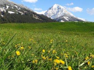 Frühjahr im Tal - Winter am Berg