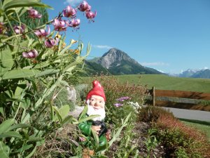 Garten mit Rubihorn im Hintergrund