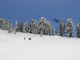 Wandern im Schnee2