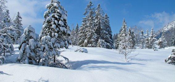 Wandern um Schnee5