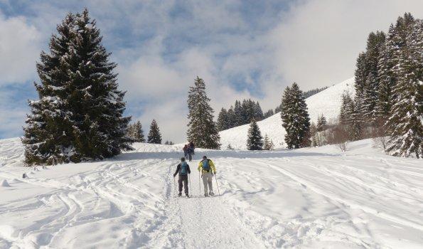 Wandern im Schnee 1