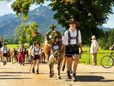 Der traditionelle Almabtrieb (Viehscheid)