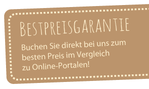 Banner Webseite klein