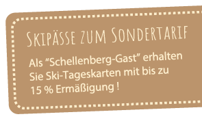 Banner Webseite Skipass