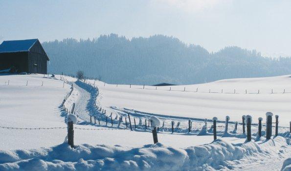 Winterwanderweg im Sonnenschein