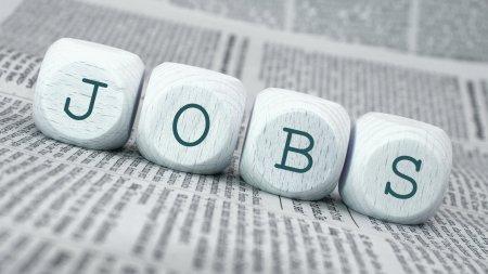 Internetseite neu Bild Jobs