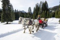 Pferdeschlitten Kutsche P.Hammerer @Dominik Berchtold (4)