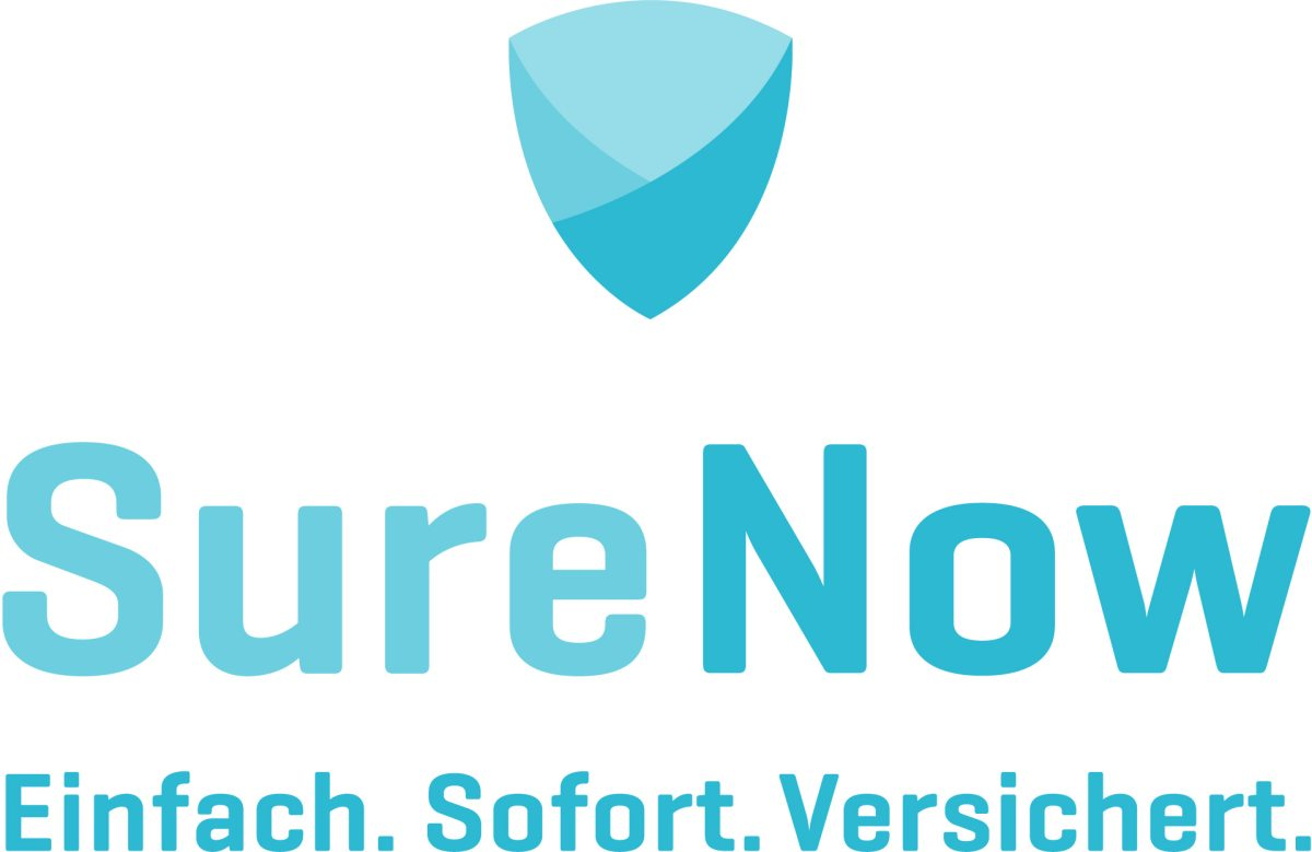Logo Sure Now