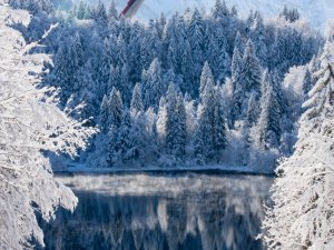 SFS Winter 2018 (8)