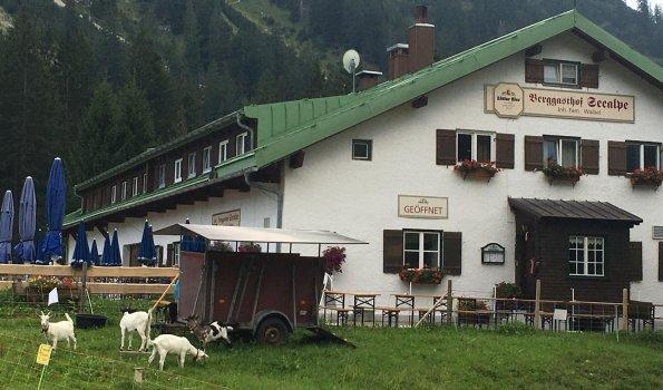 Berggasthof Seealpe-19