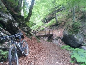 Mit dem Mountainbike durch den Tobel