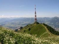 Gipfel des Grünten mit Blick auf Sonthofen