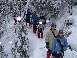 Schneeschuhwanderung bei Schneefall