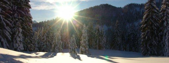Winterimpression Allgäu