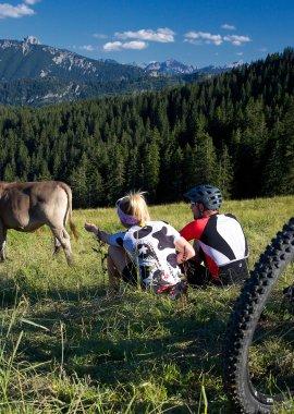 Wie wäre es mit einer Biketour in den Bergen?