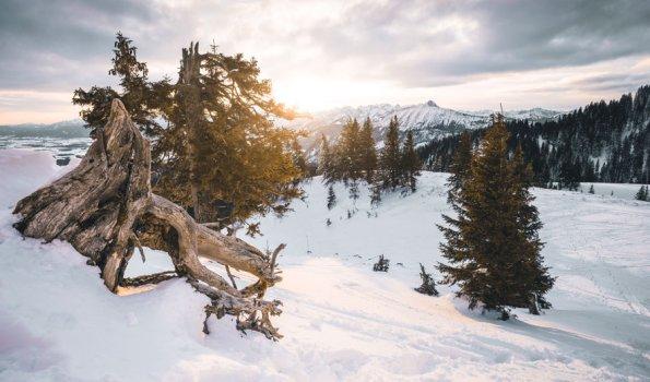 Winterlandschaft auf der Alpspitze in Nesselwang