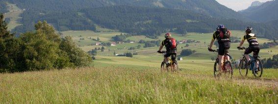 Bei einer Biketour die wunderschöne Gegend von Nesselwang entdecken