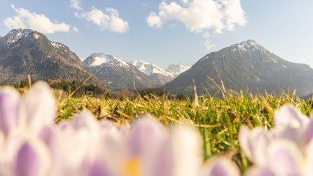 Frühlingsstimmung am Moorweiher