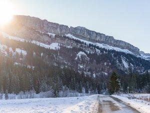 Winterliches Rohrmoos