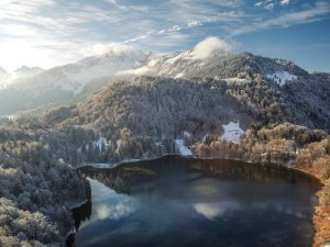 Winter am Freibergsee