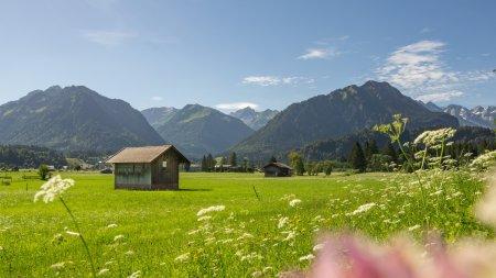 09.07.20 Jauchen-Karatsbichl-Oberstdorf-3000-023