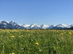 Blick von Burgberg auf Berge Oberstdorf