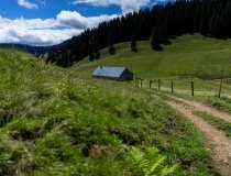 Blick auf die Alpe-Alp