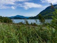 Blick über den Alpsee auf den Grünten