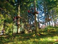 Kletterwald baerenfalle 2