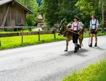 2017-09-11 Alpe Schlappold-002-3000
