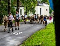 2017-09-11 Alpe Schlappold-007-3000