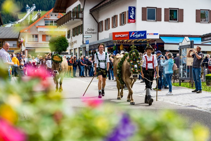 2017-09-11 Alpe Schlappold-010-3000