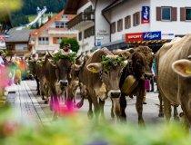 2017-09-11 Alpe Schlappold-013-3000