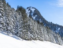 2017-12-29 Winterwonderland-003-3000