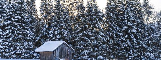 2017-12-29 Winterwonderland-008-3000