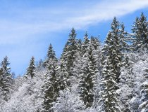 2017-12-29 Winterwonderland-012-3000