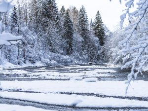 2017-12-29 Winterwonderland-015-3000